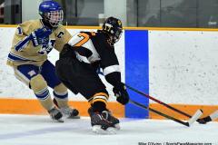 CIAC Ice Hockey; Newtown 2 vs. Daniel Hand 6 - Photo # 653