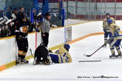 CIAC Ice Hockey; Newtown 2 vs. Daniel Hand 6 - Photo # 727