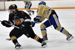 CIAC Ice Hockey; Newtown 2 vs. Daniel Hand 6 - Photo # 756
