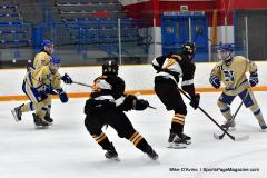 CIAC Ice Hockey; Newtown 2 vs. Daniel Hand 6 - Photo # 804