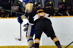 CIAC Ice Hockey; Newtown 2 vs. Daniel Hand 6 - Photo # 815
