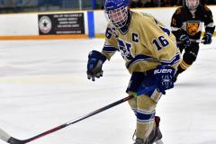 CIAC Ice Hockey; Newtown 2 vs. Daniel Hand 6 - Photo # 883