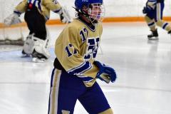 CIAC Ice Hockey; Focused on Newtown 7 vs. Mt. Everett 1 - Photo 064