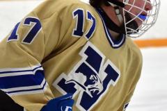 CIAC Ice Hockey; Focused on Newtown 7 vs. Mt. Everett 1 - Photo 238