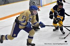 CIAC Ice Hockey; Focused on Newtown 7 vs. Mt. Everett 1 - Photo 799