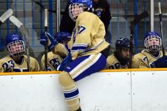 CIAC Ice Hockey; Focused on Newtown 7 vs. Mt. Everett 1 - Photo 812
