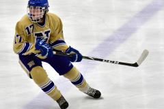 CIAC Ice Hockey; Focused on Newtown 7 vs. Mt. Everett 1 - Photo 947