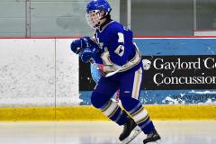 CIAC Ice Hockey; L.H.- H-K, Cogin. 8 vs Newtown 1 - Photo # (20)
