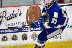 CIAC Ice Hockey; L.H.- H-K, Cogin. 8 vs Newtown 1 - Photo # (339)