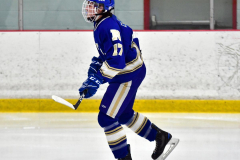 CIAC Ice Hockey; L.H.- H-K, Cogin. 8 vs Newtown 1 - Photo # (35)