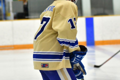 CIAC Ice Hockey; Newtown 2 vs. Daniel Hand 6 - Photo # 069
