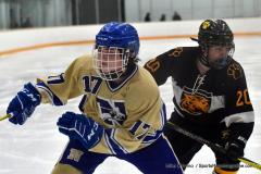 CIAC Ice Hockey; Newtown 2 vs. Daniel Hand 6 - Photo # 1039