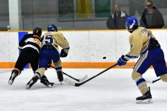 CIAC Ice Hockey; Newtown 2 vs. Daniel Hand 6 - Photo # 1447