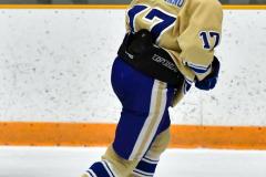 CIAC Ice Hockey; Newtown 2 vs. Daniel Hand 6 - Photo # 1449