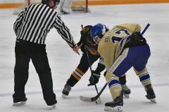 CIAC Ice Hockey; Newtown 2 vs. Daniel Hand 6 - Photo # 1458