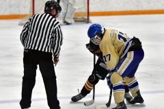 CIAC Ice Hockey; Newtown 2 vs. Daniel Hand 6 - Photo # 1460