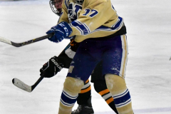 CIAC Ice Hockey; Newtown 2 vs. Daniel Hand 6 - Photo # 1462