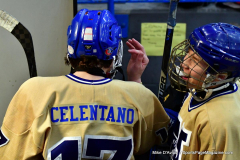 CIAC Ice Hockey; Newtown 2 vs. Daniel Hand 6 - Photo # 1618
