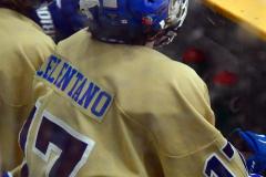 CIAC Ice Hockey; Newtown 2 vs. Daniel Hand 6 - Photo # 1735