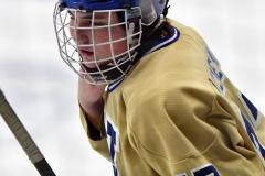 CIAC Ice Hockey; Newtown 2 vs. Daniel Hand 6 - Photo # 326