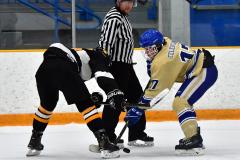 CIAC Ice Hockey; Newtown 2 vs. Daniel Hand 6 - Photo # 908