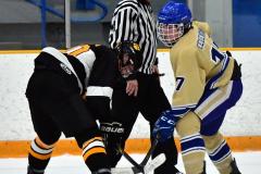 CIAC Ice Hockey; Newtown 2 vs. Daniel Hand 6 - Photo # 910