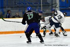 CIAC Ice Hockey; Newtown 4 vs. SH,LI,TH,NO 1 - Photo # (1065)