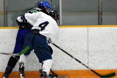 CIAC Ice Hockey; Newtown 4 vs. SH,LI,TH,NO 1 - Photo # (1187)
