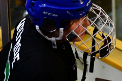 CIAC Ice Hockey; Newtown 4 vs. SH,LI,TH,NO 1 - Photo # (1328)