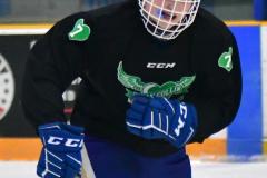 CIAC Ice Hockey; Newtown 4 vs. SH,LI,TH,NO 1 - Photo # (526)