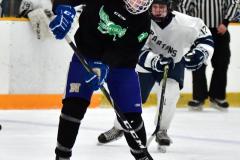 CIAC Ice Hockey; Newtown 4 vs. SH,LI,TH,NO 1 - Photo # (689)