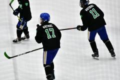 CIAC Ice Hockey; Newtown 4 vs. SH,LI,TH,NO 1 - Photo # (9)