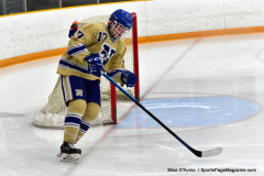 CIACT D3 Ice Hockey; #8 Newtown 7 vs. #9 Wilton 2 - Photo # 053