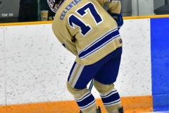 CIACT D3 Ice Hockey; #8 Newtown 7 vs. #9 Wilton 2 - Photo # 103