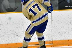 CIACT D3 Ice Hockey; #8 Newtown 7 vs. #9 Wilton 2 - Photo # 105