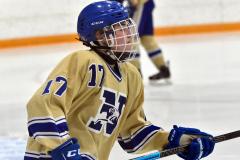 CIACT D3 Ice Hockey; #8 Newtown 7 vs. #9 Wilton 2 - Photo # 112