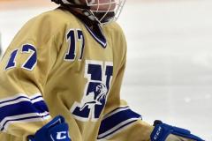 CIACT D3 Ice Hockey; #8 Newtown 7 vs. #9 Wilton 2 - Photo # 113