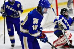 CIAC Ice Hockey; L.H.- H-K, Cogin. 8 vs Newtown 1 - Photo # (78)