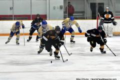 CIAC Ice Hockey; Newtown 2 vs. Daniel Hand 6 - Photo # 1152