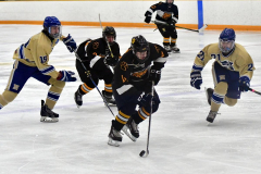 CIAC Ice Hockey; Newtown 2 vs. Daniel Hand 6 - Photo # 1154