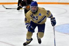 CIAC Ice Hockey; Newtown 2 vs. Daniel Hand 6 - Photo # 1166
