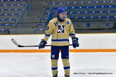CIAC Ice Hockey; Newtown 2 vs. Daniel Hand 6 - Photo # 1295