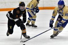 CIAC Ice Hockey; Newtown 2 vs. Daniel Hand 6 - Photo # 1536