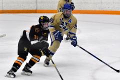 CIAC Ice Hockey; Newtown 2 vs. Daniel Hand 6 - Photo # 1537