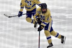 CIAC Ice Hockey; Newtown 2 vs. Daniel Hand 6 - Photo # 1734