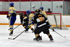 CIAC Ice Hockey; Newtown 2 vs. Daniel Hand 6 - Photo # 1841