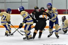 CIAC Ice Hockey; Newtown 2 vs. Daniel Hand 6 - Photo # 1858