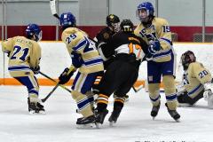 CIAC Ice Hockey; Newtown 2 vs. Daniel Hand 6 - Photo # 1859