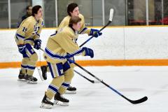 CIAC Ice Hockey; Newtown 2 vs. Daniel Hand 6 - Photo # 417