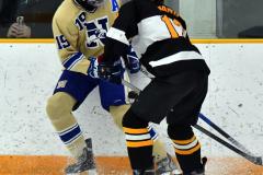 CIAC Ice Hockey; Newtown 2 vs. Daniel Hand 6 - Photo # 702